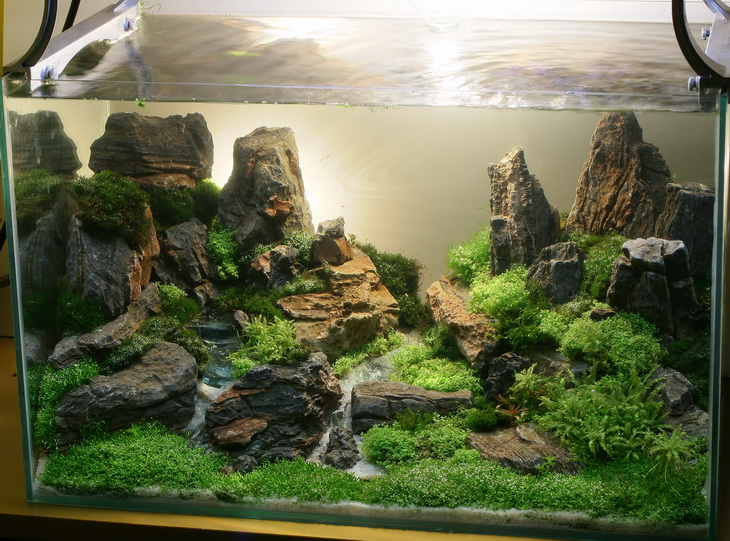 Design Aquascape Indonesia 300x222 Aquascape Design