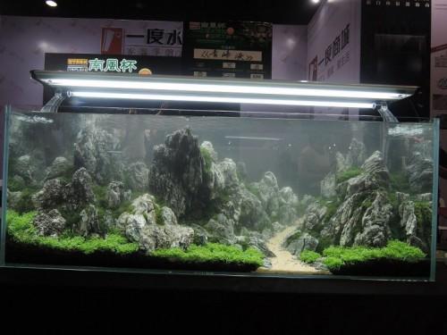 Nanfeng 5th China Aquascape Contest 10688245_10152946366702983 ...