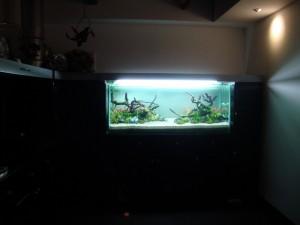 AquaJaya – Taman Anggrek