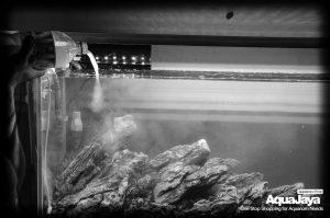 124405739500759584465568188070027578543166o-cara-membuat-aquascape-style-iwagumi-iwagumi-membuat-aquascape-aquajaya