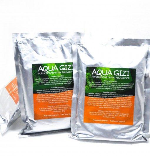 aqua-gizi-2