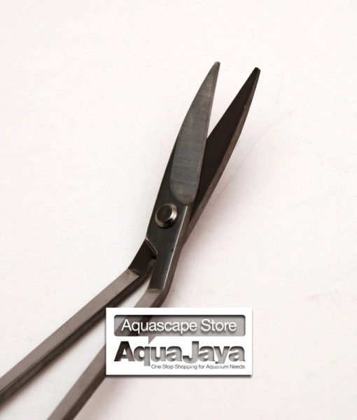 up-aquaworld-stainless-plant-scissors-curve-g-023-gunting-bengkok3