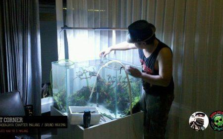 L Shape Aquarium 2015 – AJCM