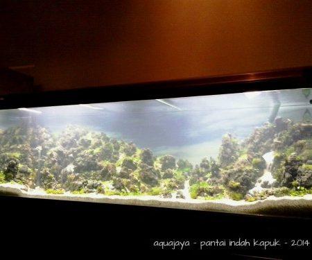 Pantai Indah Kapuk 2014 – AJHQ