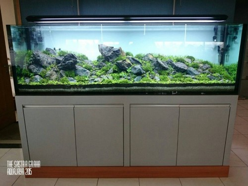 sastra-graha-2015-8211-ajhq-gallery-aquascape-aquajaya