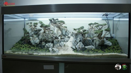 malang-2015-8211-ajcm-gallery-aquascape-aquajaya