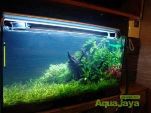 aquajayaportfoliopakariyantorawamangun07-pasadenia-rawamangun-portfolio-aquajaya