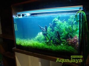 aquajayaportfoliopakariyantorawamangun08-pasadenia-rawamangun-portfolio-aquajaya
