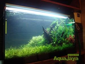 aquajayaportfoliopakariyantorawamangun10-pasadenia-rawamangun-portfolio-aquajaya