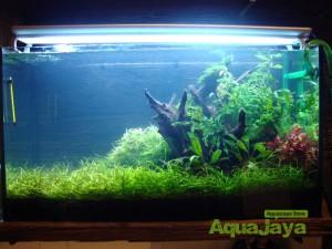aquajayaportfoliopakariyantorawamangun12-pasadenia-rawamangun-portfolio-aquajaya