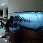aquajayaportfoliouniversitasterbuka05-universitas-terbuka-portfolio-aquajaya