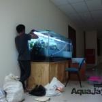 aquajayaportfoliouniversitasterbuka06-universitas-terbuka-portfolio-aquajaya