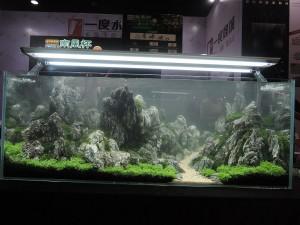 10688245101529463667029831040128194948597572o-nanfeng-5th-china-aquascape-contest-kontes-acara-aquajaya