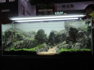 1116204010152946366697983522776425356391775o-nanfeng-5th-china-aquascape-contest-kontes-acara-aquajaya