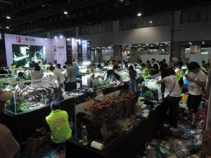 11206613101529463809829836895235798011377422o-nanfeng-5th-china-aquascape-contest-kontes-acara-aquajaya
