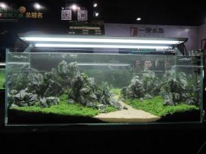 11224560101529463668829832748650107956084184o-nanfeng-5th-china-aquascape-contest-kontes-acara-aquajaya