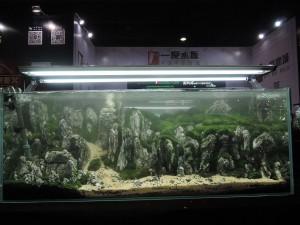 11227421101529463669479833029476944512108826o-nanfeng-5th-china-aquascape-contest-kontes-acara-aquajaya
