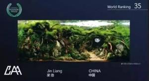 chinese-aquascapers-association-006-chinese-aquascapers-association-caa-di-iaplc-2015-kontes-acara-aquajaya