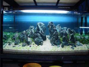 dsc00489-aquajaya--papandayan-portfolio-aquajaya