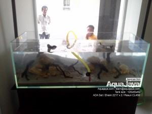 edlinlippokarawaci03-aquajaya--lippo-karawaci-portfolio-aquajaya