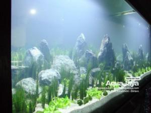 paktemmybintaro004-aquajaya--bintaro-portfolio-aquajaya