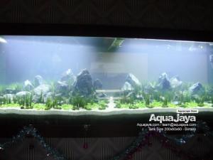 paktemmybintaro005-aquajaya--bintaro-portfolio-aquajaya