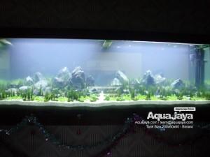paktemmybintaro007-aquajaya--bintaro-portfolio-aquajaya