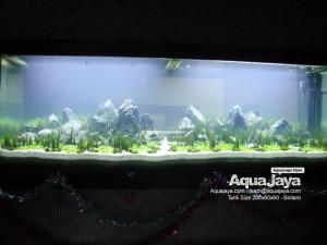 paktemmybintaro010-aquajaya--bintaro-portfolio-aquajaya