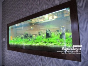 paktemmybintaro011-aquajaya--bintaro-portfolio-aquajaya