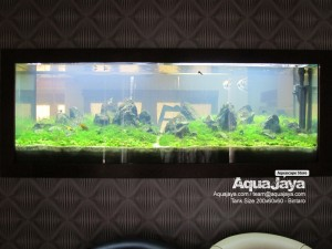 AquaJaya – Bintaro