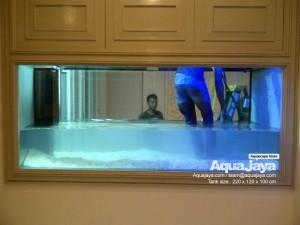 aquajayaancol201306-aquajaya--ancol-marinara-portfolio-aquajaya