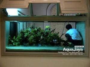 aquajayaancol201307-aquajaya--ancol-marinara-portfolio-aquajaya
