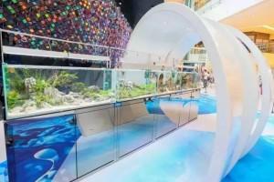 new-town-ocean-day-world-001-oceans-day-world-di-new-town-plaza-hongkong-berita-umum-aquajaya
