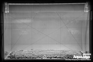 127948579500719384469581939591181912323503o-cara-membuat-aquascape-style-iwagumi-iwagumi-membuat-aquascape-aquajaya