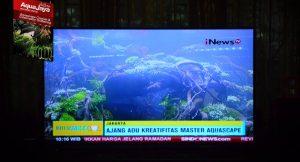 133051769877657280109124984678528408904852o-aquajaya-challenge-2016-on-mnc-inews-tv-kontes-acara-aquajaya
