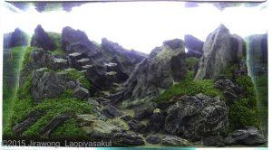nano-aquascape--unconditional-love--jirawong-laopiyasakul-02-nano-aquascape--unconditional-love--jirawong-laopiyasakul-nano-aquascape-aquajaya