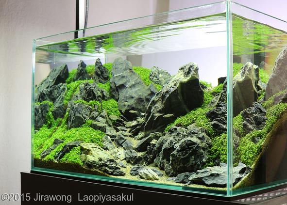 Nano Aquascape Aquajaya