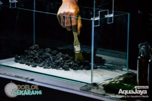 cara-membuat-aquascape-02-cara-membuat-aquascape--step-by-step-membuat-aquascape-aquajaya