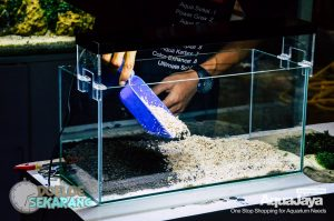 cara-membuat-aquascape-10-cara-membuat-aquascape--step-by-step-membuat-aquascape-aquajaya