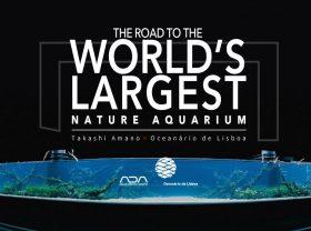 florestas-submersas-06-florestas-submersas--40-meter-nature-aquarium-aquascape-raksasa-aquajaya