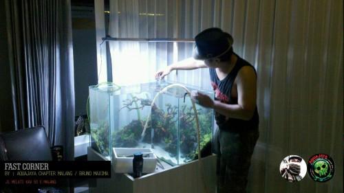 l-shape-aquarium-2015-8211-ajcm-portfolio-aquajaya-aquajaya