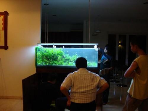 bdn-jaksel-2013-8211-ajhq-portfolio-aquajaya-aquajaya