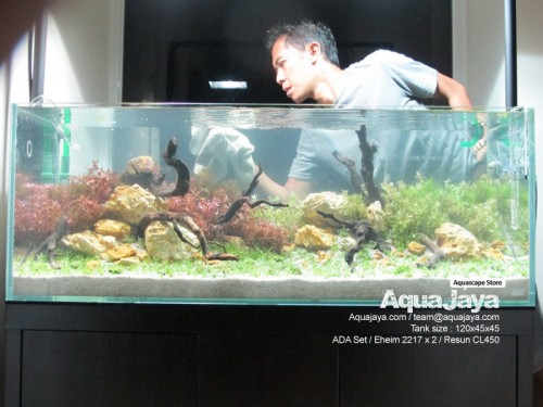 lippo-karawaci-2013-8211-ajhq-portfolio-aquajaya-aquajaya