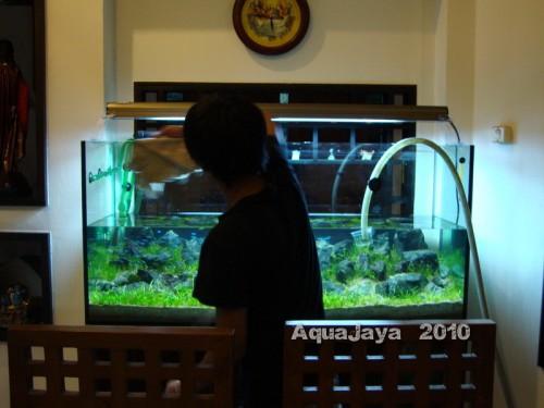 taman-palem-2010-8211-ajhq-portfolio-aquajaya-aquajaya