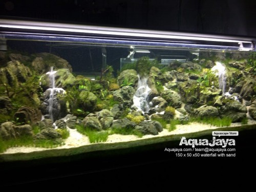 main-display-2013-8211-ajhq-portfolio-aquajaya-aquajaya